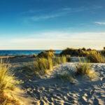 plage et dunes